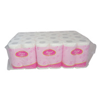 Toilet Paper 2 ply 250 sheet (x48 Rolls) Whisper