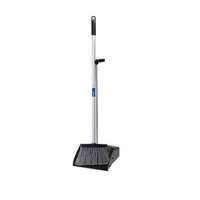 Long Handled Dustpan & Lobby Broom Set