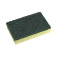 Cleaning Sponge Scourer - Pack of 10